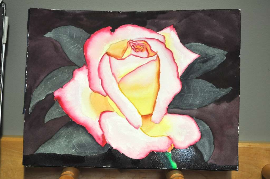 Pink rose with yellow glow