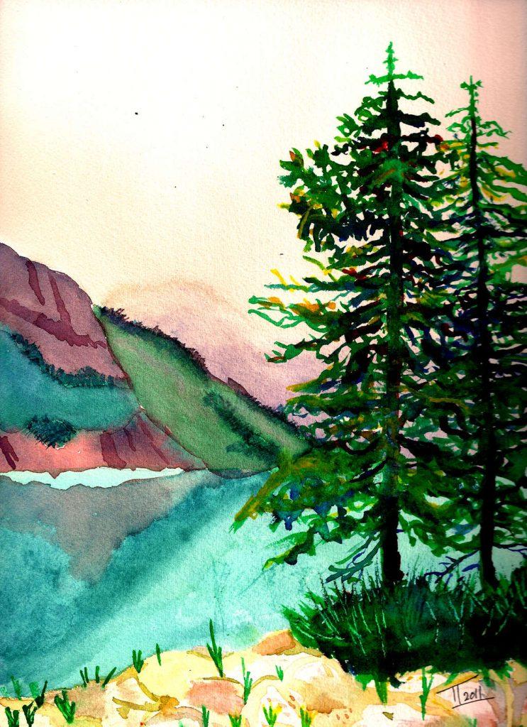 Pine Trees by Lake
