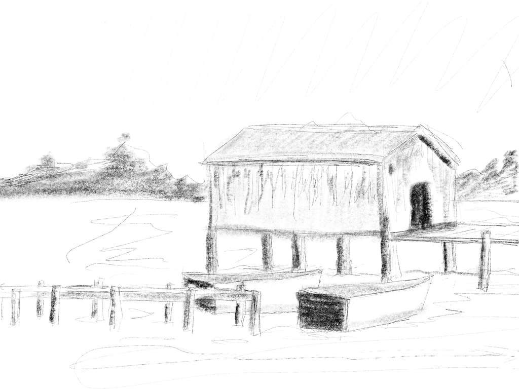 005-procreate-sketch