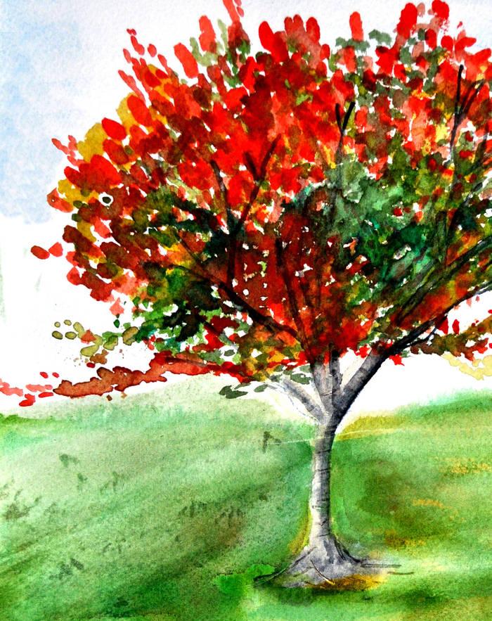 Solo Tree, colour