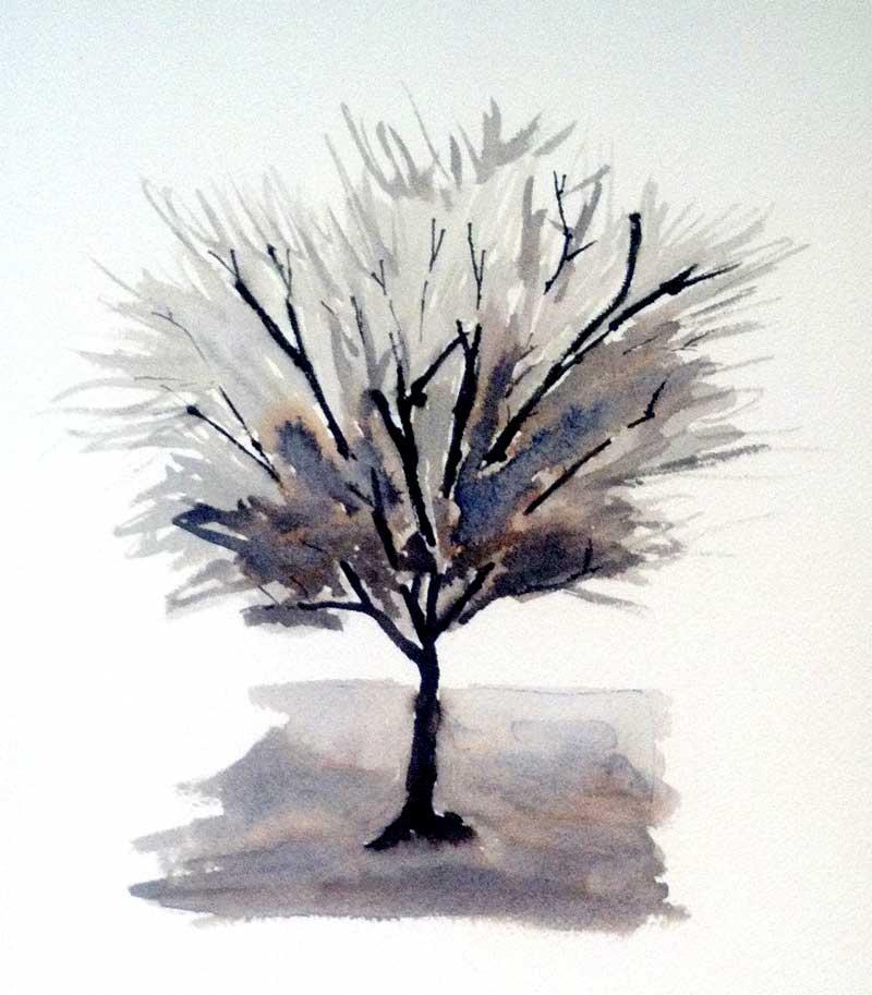 Solo Tree, monochrome
