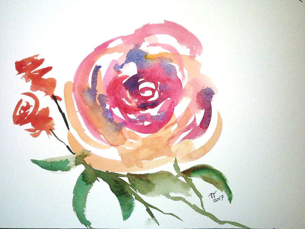 fast and loose rose