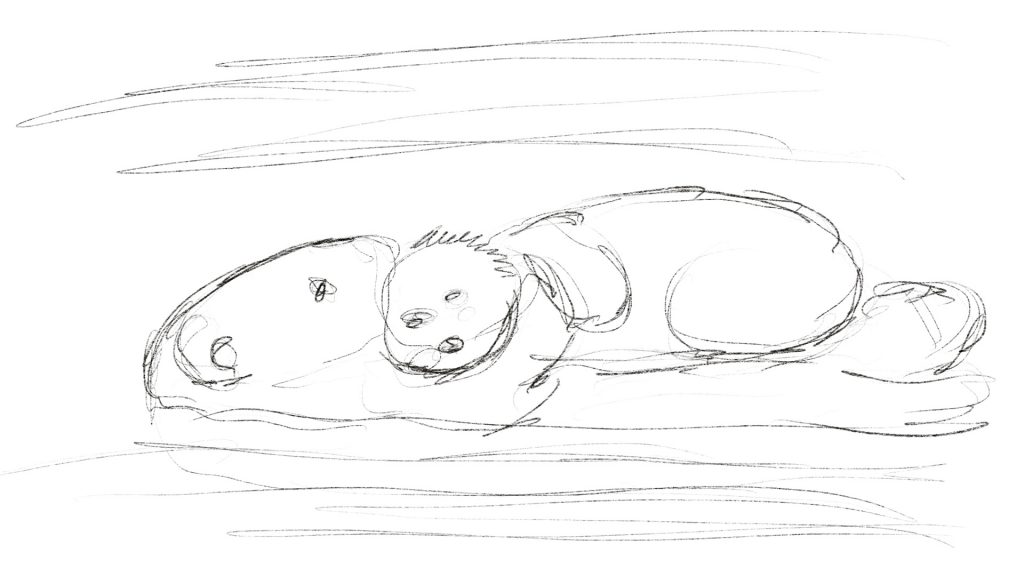 sketch of sea otter mom with pup